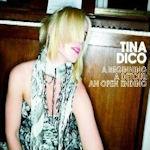 A Beginning/A Detour/An Open Ending - Tina Dico