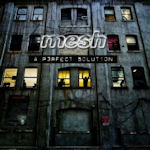 A Perfect Solution - Mesh