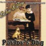 Echo And Boo - Pavlov