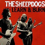 Learn And Burn - Sheepdogs