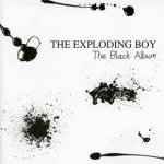 The Black Album - Exploding Boy