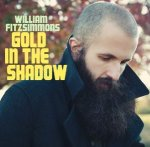 Gold In The Shadow - William Fitzsimmons