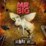 What If - Mr. Big