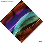 Smother - Wild Beasts