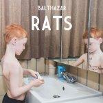 Rats - Balthazar