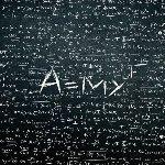 amyf bushido album