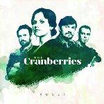 Roses - Cranberries
