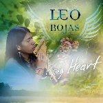 Flying Heart - Leo Rojas