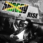 Rise - Shaggy