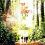 Feels Like A New Morning - Blow Monkeys