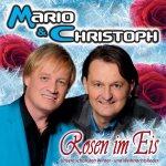 Rosen im Eis - Mario + Christoph