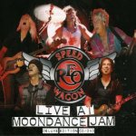 Live At Moondance Jam - REO Speedwagon
