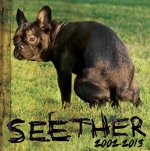 2002 - 2013 - Seether