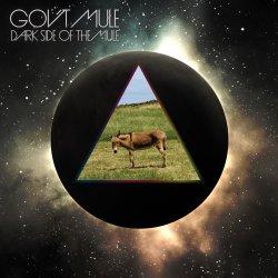 Dark Side Of The Mule - Gov