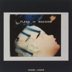 Flesh And Machine - Daniel Lanois