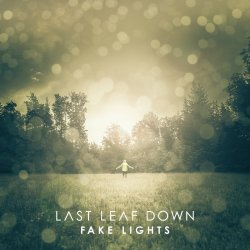 Fake Lights - Last Leaf Down