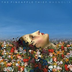Magnolia - Pineapple Thief