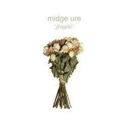 Fragile - Midge Ure