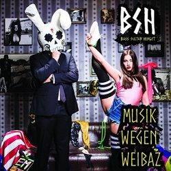 Musik wegen Weibaz - Bass Sultan Hengzt