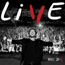 Live 2014 - Patrick Bruel