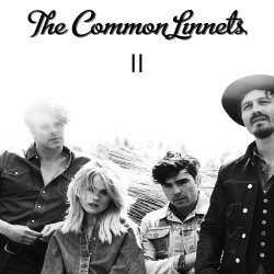 II - Common Linnets