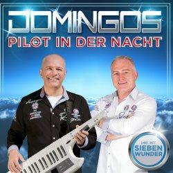 Pilot in der Nacht - Domingos