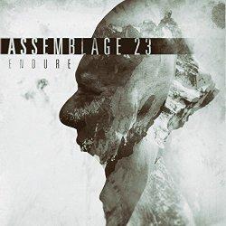 Endure - Assemblage 23