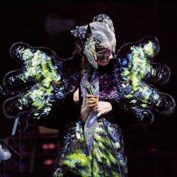 Vulnicura - Live - Björk