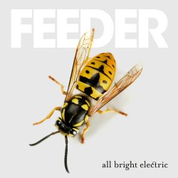 All Bright Electric - Feeder