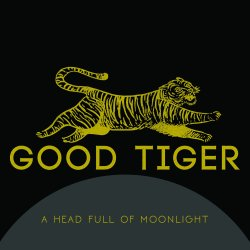 A Head Full Of Moonlight - Good Tiger