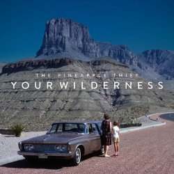 Your Wilderness - Pineapple Thief