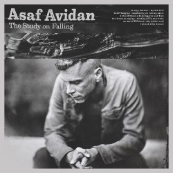 The Study On Falling - Asaf Avidan