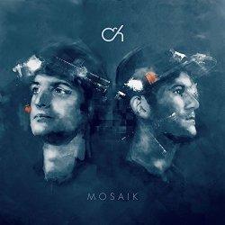 Mosaik - Camo + Krooked