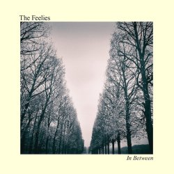 In Between - Feelies