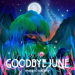 Magic Valley - Goodbye June
