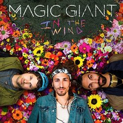 In The Wind - Magic Giant