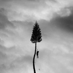 A Black Mile To The Surface - Manchester Orchestra