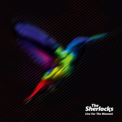 Live For The Moment - Sherlocks
