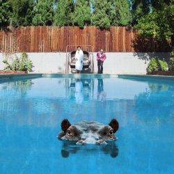 Hippopotamus - Sparks