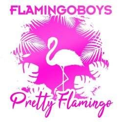 Pretty Flamingo - Flamingoboys