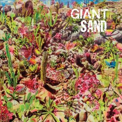 Returns To Valley Of Rain - Giant Sand