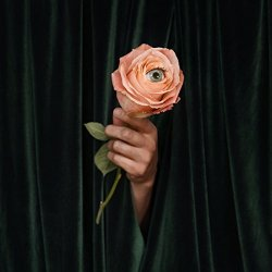 Unusual - Marian Hill