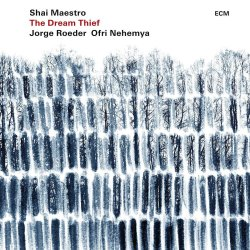 The Dream Thief - Shai Maestro