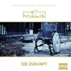 Die Zukunft - Malik