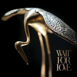 Wait For Love - Pianos Become The Teeth