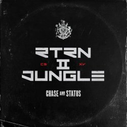 Return II Jungle - Chase And Status