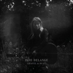 Gravel And Dust - Ilse DeLange