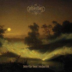 Into The Vast Uncharted - Netherbird