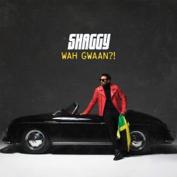 Wah Gwaan?! - Shaggy