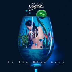 In The Blue Zone - Shakatak